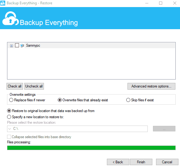 Backup Everything Restore