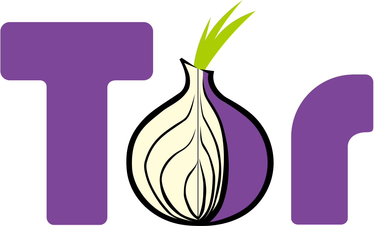 Best VPNs for Tor users to maximize privacy