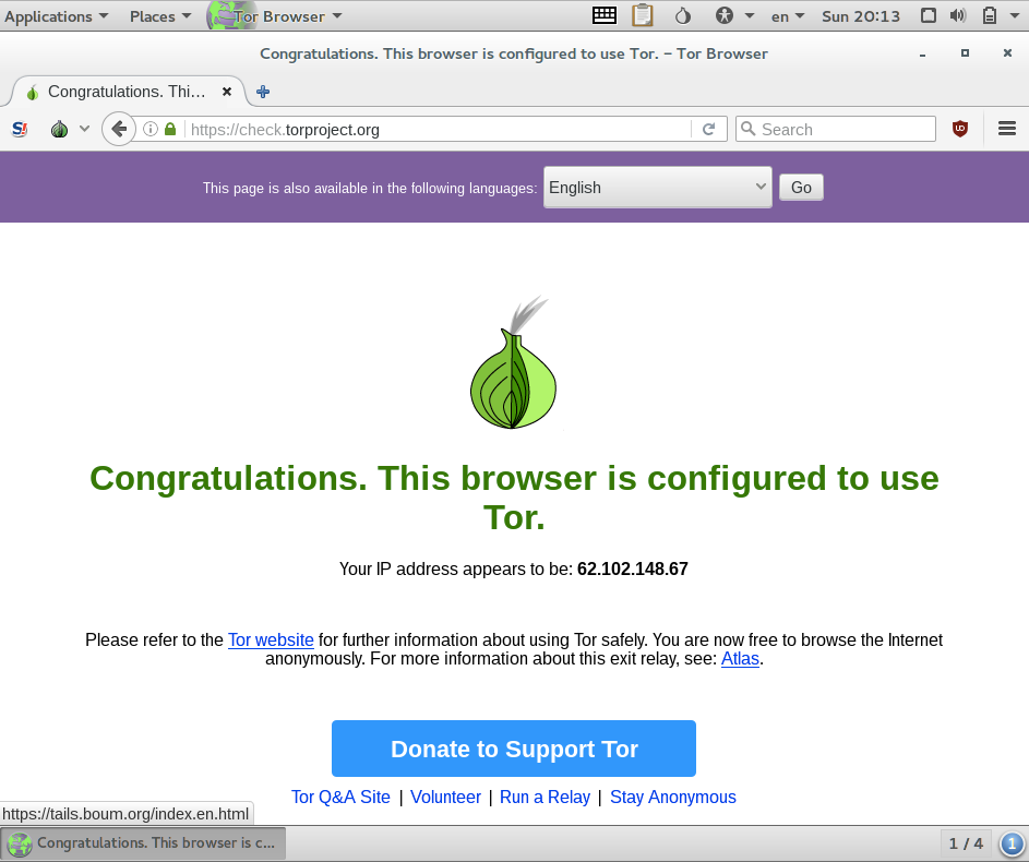 tails running tor browser check
