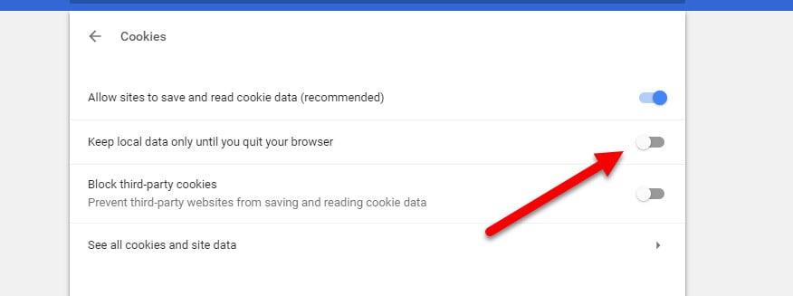 chrome cookie local data