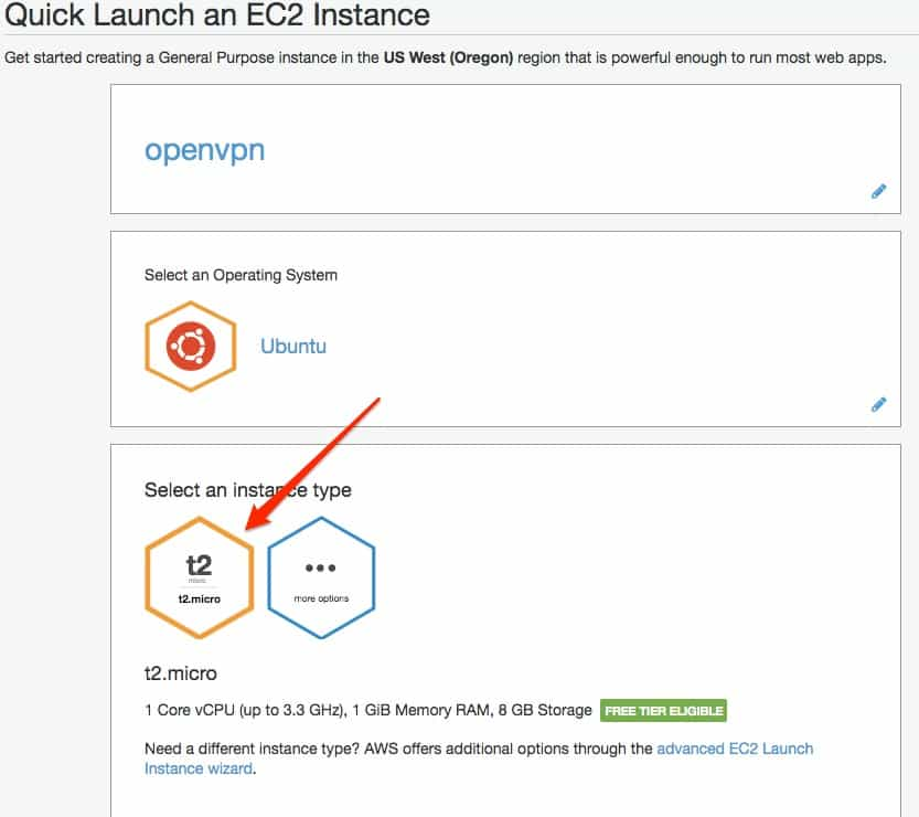 Quick Launch an EC2 Instance - type