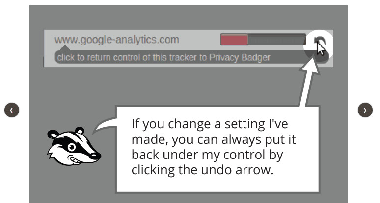Privacy Badger instructions.