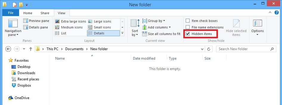view hidden files in WIndows