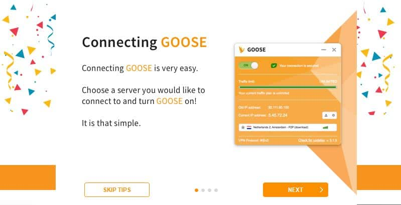 Goose VPN starter tips.