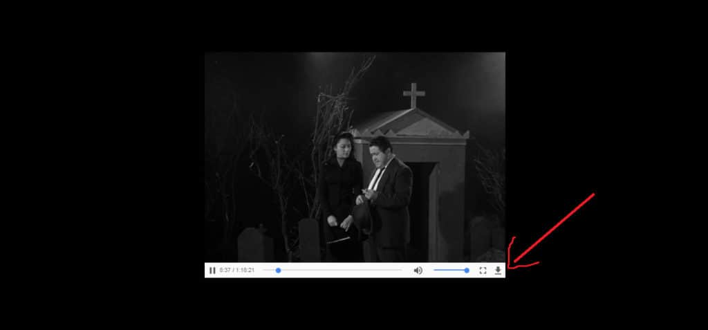 Internet Archive Movies download 2