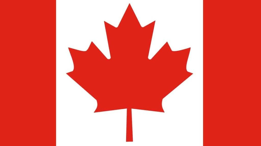 Canadian flag for ufc 247 Jones vs Reyes