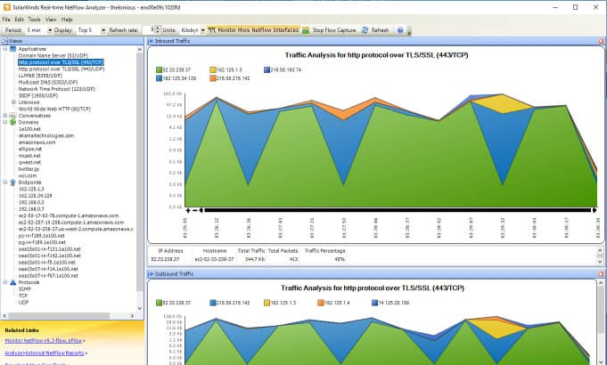 Screenshot of SolarWinds Real-Time Network Traffic Analyzer with tree graph and diagram showing traffic of selected item