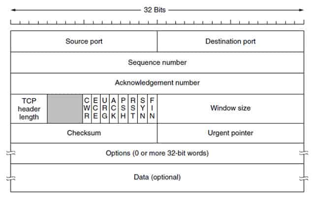 TCP header structure