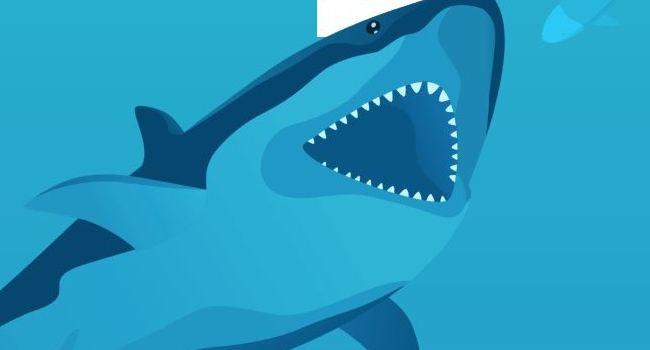 Surfshark review.