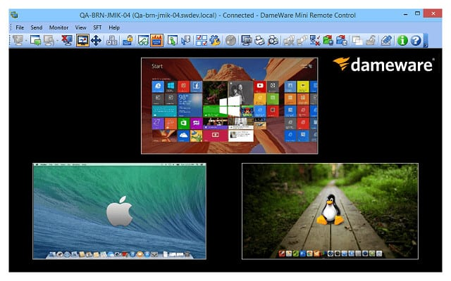 Dameware remote desktop viewer