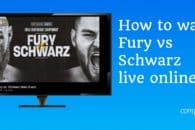 How to watch Fury vs Schwarz live online from anywhere