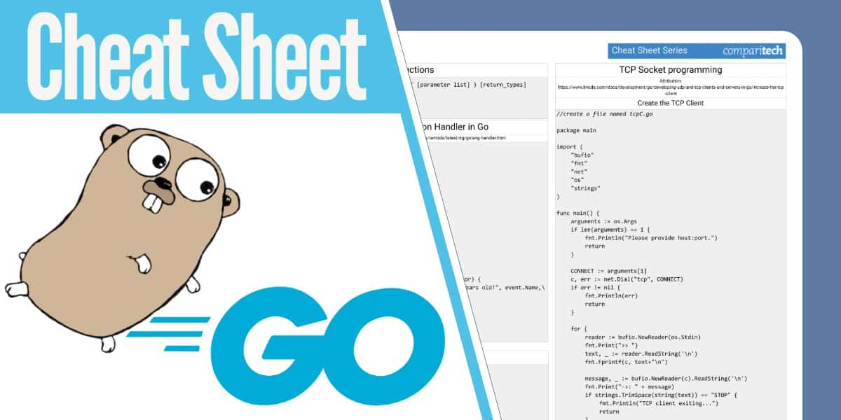 go network programming cheat sheet