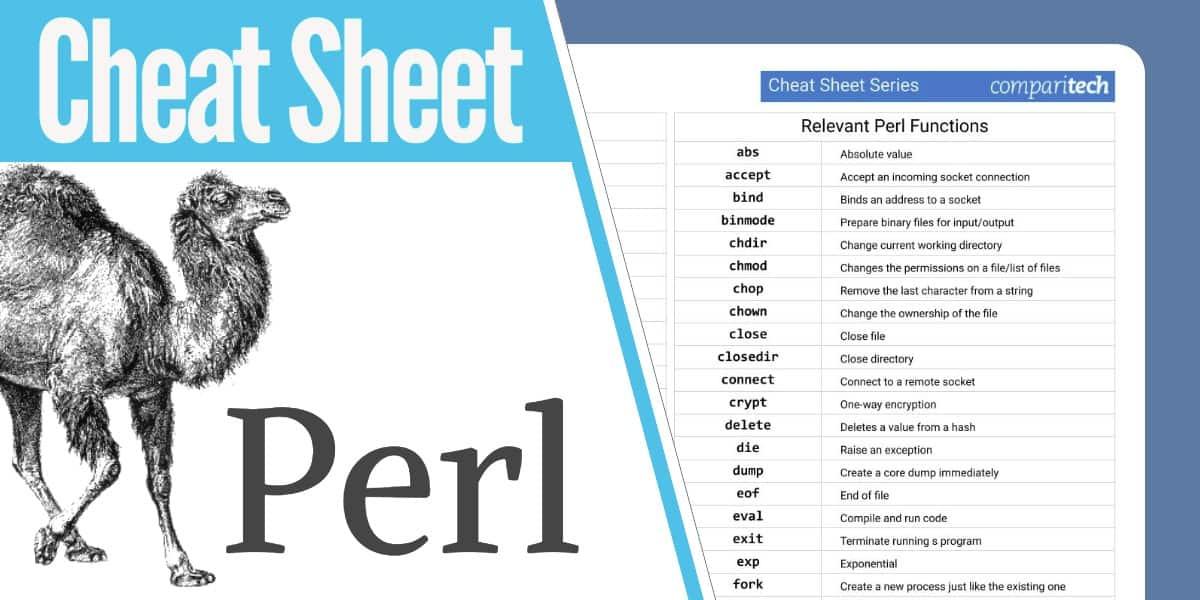 perl network programming