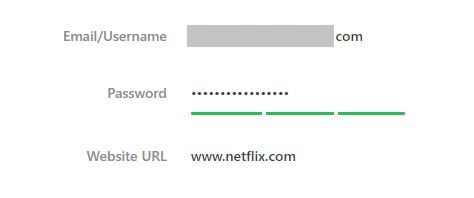 An example of the password strength checker.