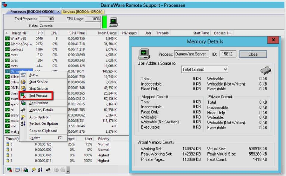 SolarWinds Dameware Remote Support - Processes