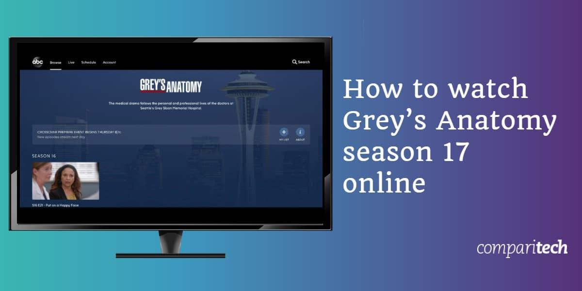 watch Grey's Anatomy season 17 online