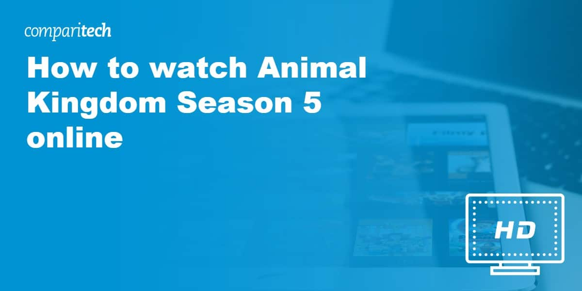 watch Animal Kingdom VPN